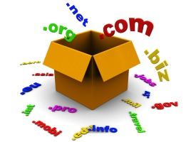 Domain Name Registration and Hosting Services - URJJ Technoyug